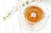 Cup of tea and spring blossom — Stock Photo