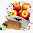 Apples  and apple tree blossoms — Stock Photo #72081651