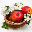 Apples  and apple tree blossoms — Stock Photo #72174263