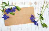 Periwinkle flowers with card — Stock Photo