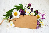 Flowers with vintage tag — Stock Photo