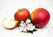 Apples and apple tree blossoms — Stock Photo