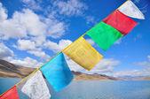 藏族的祷告旗 — 图库照片