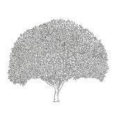 A clump of shrubs — Stock Vector
