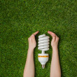 Hands with energy saving eco lamp over green grass — Stock Photo #70613587