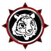 White tiger — Stock Vector