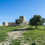 Castle Jimena de la Frontera, Cadiz, Spain — Stock Photo #71638221