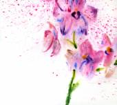 Beautiful watercolor orchids — Stock Photo