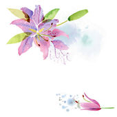 Floral watercolor  background — Stock Photo