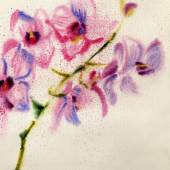 Watercolor flowers on old paper — Stock Photo
