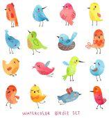 Watercolor set vector birds — Stock Vector