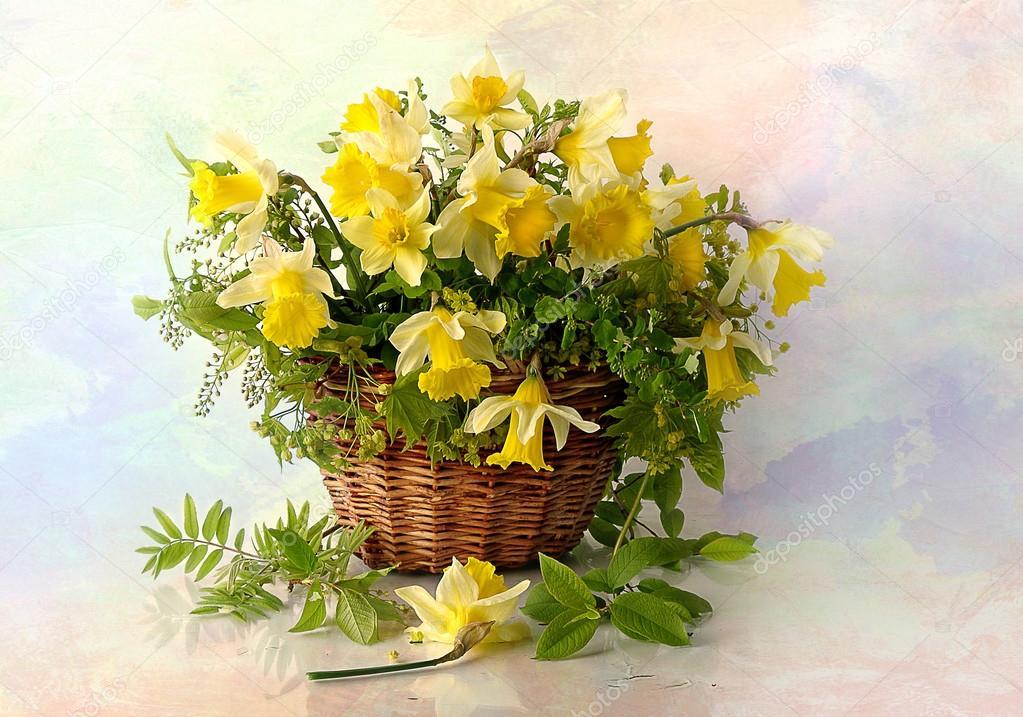 Jonquilles de printemps jaune dans un panier d 39 osier sur for Bouquet de fleurs jaunes