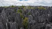 Tsingy de Bemaraha. — Stockfoto