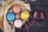 Easter eggs photo composition — Stock Photo
