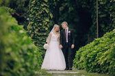 Beautiful blond wedding couple — 图库照片