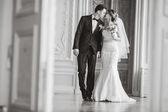 Wedding photo — Stock Photo