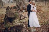 Bride walking in golden autumn nature — Stock Photo