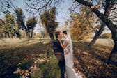 Wedding couple in love outdoors — Stockfoto