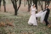 свадебная пара — Стоковое фото