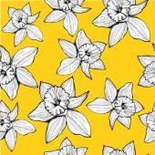 Hand drawn daffodils — Vetor de Stock