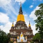 Big Image of buddha in ayutthaya ancient city, thailand — Stock Photo #64918513
