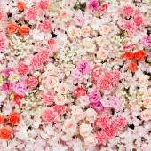Красивые цветы фон — Стоковое фото