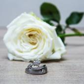 Wedding rings with rose flowers — Stock Photo