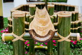 Thailand bamboo fountain with water dripping from snout — Stock Photo