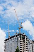 краны строительные — Стоковое фото