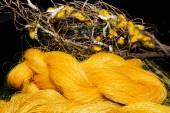Zijde cocons en ruwe zijde draden — Stockfoto