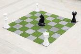 Big Chessboard - Big Horse Chess — Стоковое фото