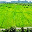Aerial view of a green rural area under blue sky — Stock Photo #65130487