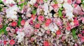 Bos van bloemen — Stockfoto