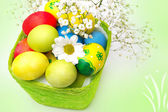 Beautiful Easter eggs and a basket  — Stock Photo