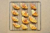 Fresh baked croissants on metallic rack — Stock Photo