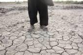 Drought Land — Stock Photo