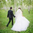 A newly wed couple walking through forrest, holding hands — Stock Photo #66084779