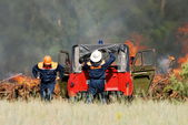Team of firefighters extinguish a forest fire in the fores — Stock Photo