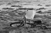 Forgotten Bicycle — Stock Photo