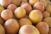 葡萄柚 — 图库照片