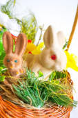 Easter rabbits vertical — Stock Photo