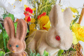 Easter rabbits closeup — Stock Photo