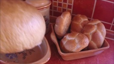Closeup of freshly baked bakery products — Stock Video