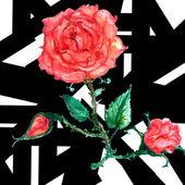 Seamless flower red roses pattern — Stock Vector