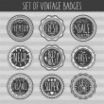 Set of retro badges — Stock Vector #65363999