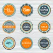 Vintage labels template set. Vector retro badges — Stock Vector #74963891