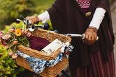 Bicycle basket with woman — Zdjęcie stockowe