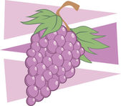 Illustrazione di uva — Vettoriale Stock