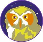 Night owl illustration — Stock Vector