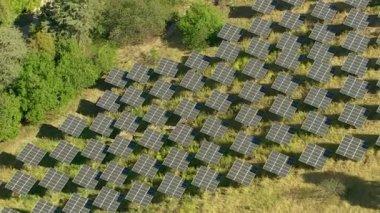 Solar panels on hillside — Stock Video